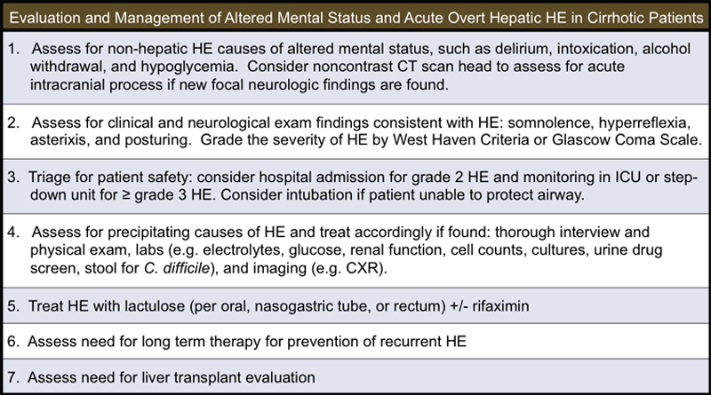 <div>Adapted from: Bajaj BS. Review article: the modern management of hepatic encephalopathy. Aliment Pharmacol Ther. 2010;31:537-47.</div>