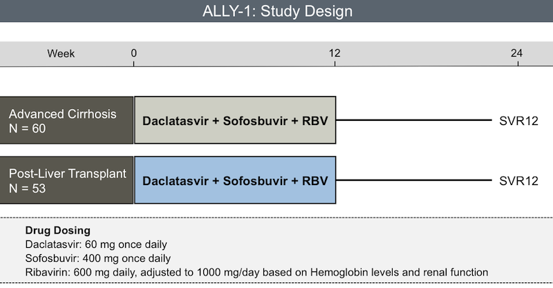 <div>Source: Poordad F, Schiff ER, Vierling JM, et al. Daclatasvir, sofosbuvir, and ribavirin combination for HCV patients with advanced cirrhosis or post-transplant recurrence: ALLY-1 phase 3 study. 50th Annual Meeting of the European Association for the Study of the Liver; April 22-26, 2015; Vienna, Austria. Abstract L08.</div>