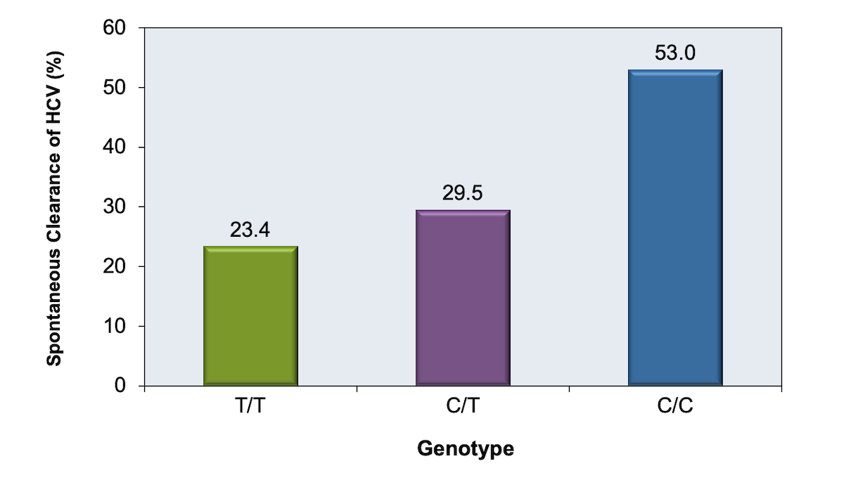 This graphic shows the percentage of persons with spontaneous clearance of HCV after initial infection in relation to the individual's IL28B genotype. Clearance rates are highest among persons with the CC genotype.<div>Source: Thomas DL, Thio CL, Martin MP, et al. Genetic variation in IL28B and spontaneous clearance of hepatitis C virus. Nature. 2009;461:798-801.</div>