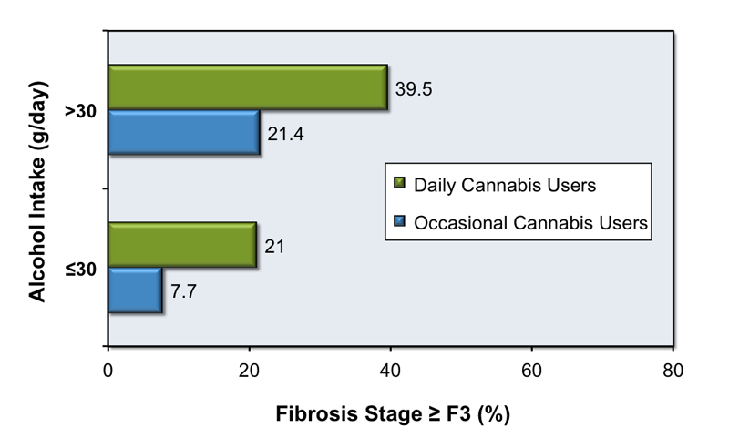 In this study, investigators analyzed  the impact of cannabis consumption on the progression of hepatic fibrosis in 270 patients with chronic hepatitis C. Cannabis use was categorized as occasional use or daily use. This analysis was further adjusted based on alcohol consumption (less than or equal to 30 g per day or greater than 30 g per day). Patients with daily cannabis use had greater likelihood of having advanced liver fibrosis than those with occasional cannabis use, regardless of alcohol intake.<div>Source: Hézode C, Roudot-Thoraval F, Nguyen S, et al. Daily cannabis smoking as a risk factor for progression of fibrosis in chronic hepatitis C. Hepatology. 2005;42:63-71.</div>