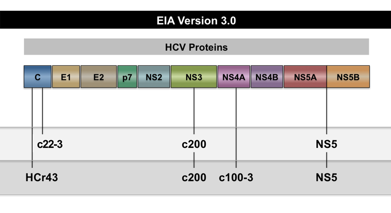 The third-generation HCV EIA is a qualitative test that detects human antibodies. This image shows several combinations of proteins used in different third-generation HCV EIA tests.<div></div>