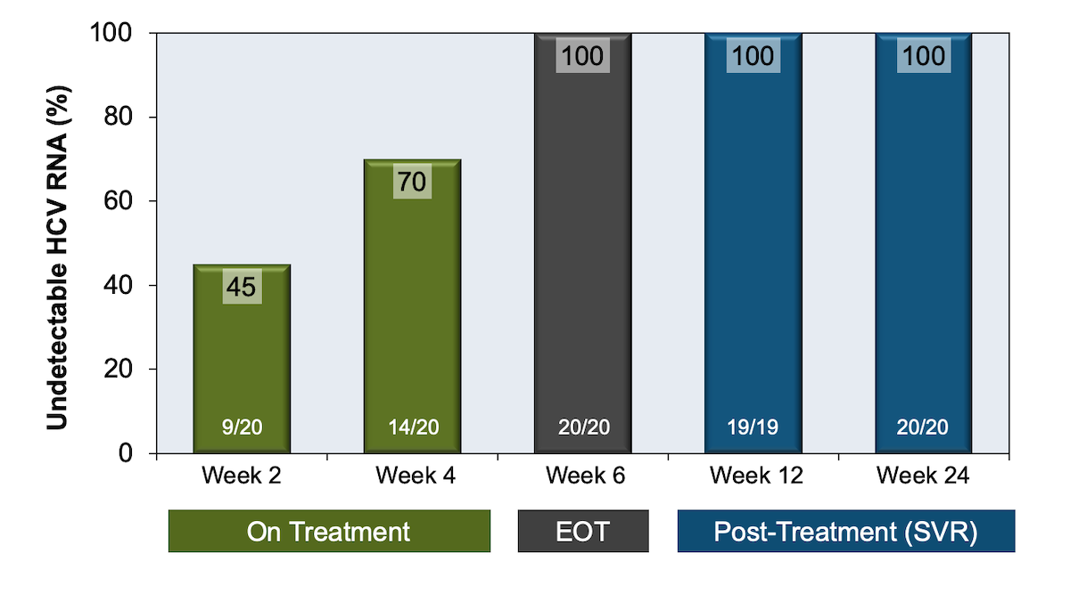 0150a6f6121 All participants in the study achieved an SVR12. At week 4 of treatment