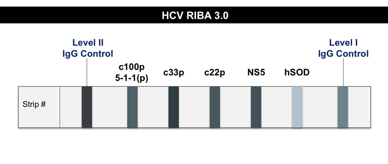The HCV RIBA is a highly sensitive and specific antibody test, but it is a more complex and expensive test to perform than the HCV EIA. The HCV RIBA is no longer available in the United States.<div></div>