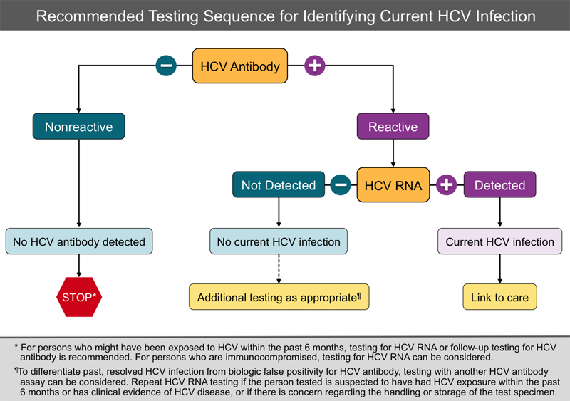 This diagram shows the HCV testing sequence recommended by the Centers for Disease Control and Prevention in May 2013.<div>Source: Centers for Disease Control and Prevention (CDC). Testing for HCV infection: an update of guidance for clinicians and laboratorians. MMWR Morb Mortal Wkly Rep. 2013;62:362-5.</div>