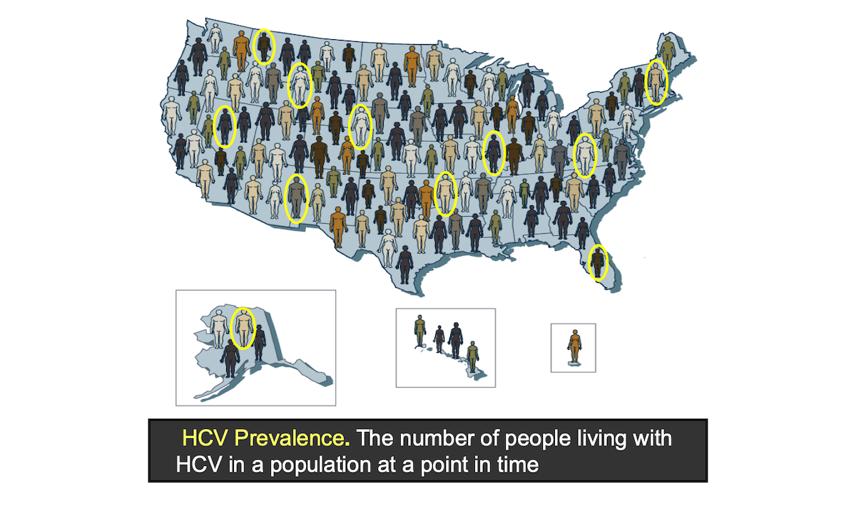 The HCV prevalence in the United States refers to the estimated number of people living with hepatitis C in the United States. This number may refer to the number of persons who have ever been infected or those with current active HCV infection. This graphic represents a conceptual view of HCV prevalence and does not represent actual numbers. The prevalence rate is the number of persons with HCV per 100,000 persons in the population.<div>Illustration: David H. Spach, MD</div>