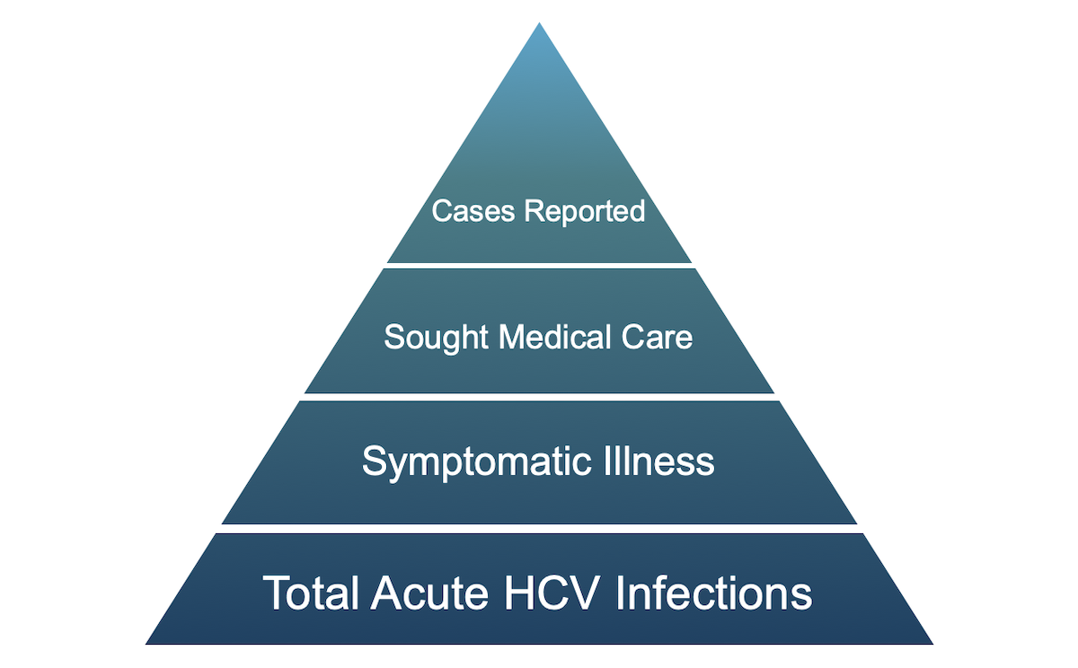 As shown in this conceptual model, only a minor proportion of persons with acute (new) HCV infection have their case reported. The CDC estimates a ratio of 13.9 total acute HCV infections for every 1 reported case of acute HCV infection.<div>Source: modified from Klevens RM, Liu S, Roberts H, Jiles RB, Holmberg SD. Estimating acute viral hepatitis infections from nationally reported cases. Am J Public Health. 2014;104:482-7.</div>