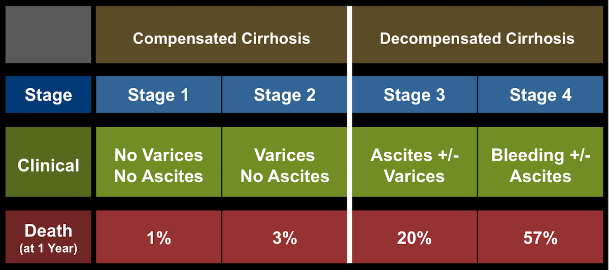 Patients with cirrhosis can be subcategorized as having four stages, with stages 1 and 2 classified under Compensated category and stages 3 and 4 in the Decompensated category. The risk of death increases significantly with each more advanced stage.<div>Source: D'Amico G, Garcia-Tsao G, Pagliaro L. Natural history and prognostic indicators of survival in cirrhosis: a systematic review of 118 studies. J Hepatol. 2006;44:217-31.</div>