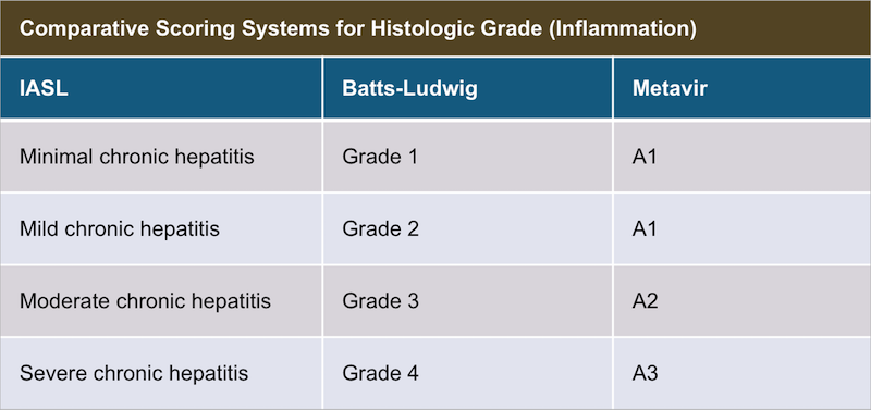 This table shows three different scoring systems for histologic grade (hepatic inflammation). 